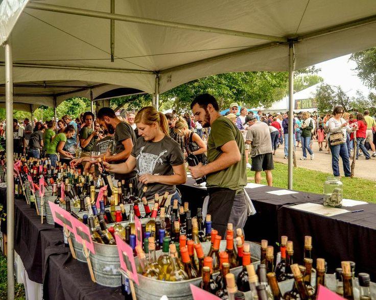 New Braunfels Wine Tasting Tours Party Bus Rental Services limousine vineyards top best tours
